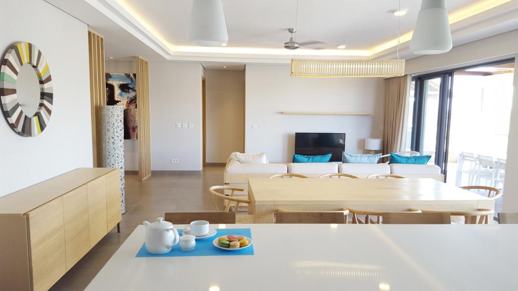 Choisy Penthouse